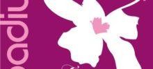 SOIREE VIP au Spadium Zen: Vendredi 24 Novembre